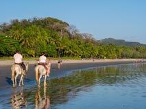 Horseback het Berijden in Costa Rica Royalty-vrije Stock Afbeeldingen