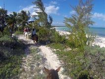 Horseback het berijden langs de branding in Cancun, Mexico Royalty-vrije Stock Afbeeldingen