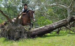 Horseback het dwars berijden van het land stock foto