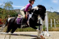 Horseback het Springen van de Ruiter Royalty-vrije Stock Afbeeldingen