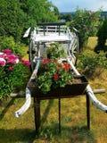 Horseback jazda wypełniająca z kwiatami zdjęcie stock