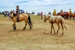 Horseback jockeys, Nadaam horse race, Mongolia Royalty Free Stock Image