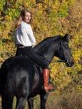 Horseback kobieta jedzie konia w jesień koloru żółtego drewnach zdjęcie stock