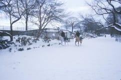 Horseback ride through fresh snow in Central Park, Manhattan, New York City, NY Royalty Free Stock Photo