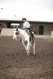 Horseback Rider 1 Royalty Free Stock Photography