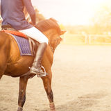 Horseback rider on field with copy space aside Royalty Free Stock Photos