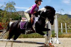 Horseback Rider Jumping. A horseback rider jumping over an obstacle Royalty Free Stock Images