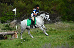 Cross country rider on eventing pony stock images