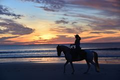 A horseback rider relaxes on her favorite steed along the north Florida coastline stock images
