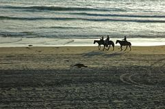 Horseback Riders. Father and son riding horses on the beach with a cowboy Royalty Free Stock Photos