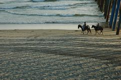 Horseback Riders. Family riding horses on a beach with a cowboy Stock Photos