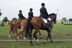 Horseback riding. Mounted horseback riders relaxing at a competition stock image