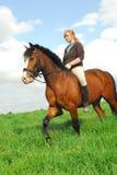 Horseback riding royalty free stock images