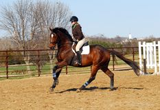Free Horseback Riding Stock Photography - 4886922