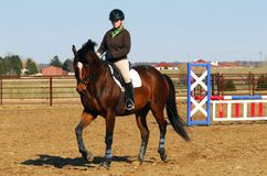 Horseback riding Stock Images