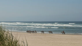 Horseback riding on the beach Stock Photography