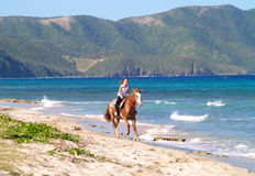 Horseback riding on beach. Girl horseback riding on a tropical beach. Cane Bay, St. Croix, US Virgin Islands Royalty Free Stock Images