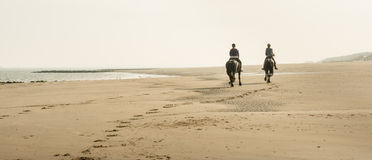 Horseback riding on the beach early in the morning Royalty Free Stock Photos