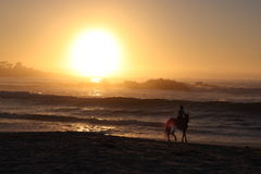 Horseback riding and beach sunset Stock Images