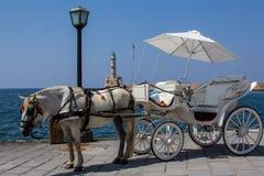 Horseback riding on the coast of Crete. Royalty Free Stock Photo