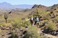 Horseback Riding in the Desert Stock Images