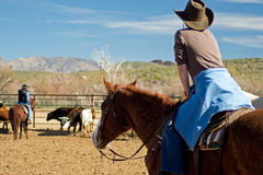 Horseback Riding in the Desert Stock Image
