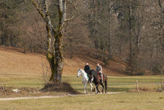 Horseback riding in the forest Royalty Free Stock Photography