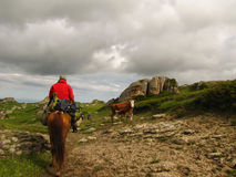 Horseback riding in the high mountain countryside Royalty Free Stock Images