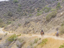 Horseback riding in Hollywood Hills trail Royalty Free Stock Images