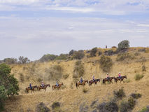 Horseback riding in Hollywood Hills trail Royalty Free Stock Photography