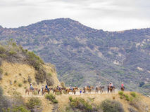 Horseback riding in Hollywood Hills trail Stock Images