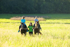 Horseback Riding Lessons Stock Photography