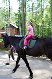 Horseback riding little girl Stock Photo