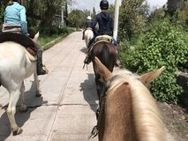 Horseback Riding in Mexico. Riding down a road in a remote Mexican Royalty Free Stock Image