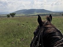 Horseback Riding in Mexico. A view of the mountain Royalty Free Stock Image