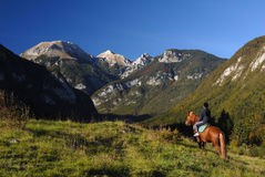 Horseback riding in paradise Royalty Free Stock Photo