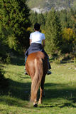 Horseback riding in paradise Royalty Free Stock Photos