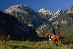 Horseback riding in paradise Stock Photo