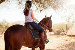 Horseback riding on a sunny day Stock Photography