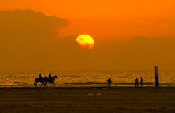 Horseback riding and sunset Stock Images