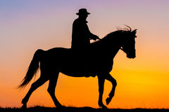 Horseback riding in the sunset. Silhouette of horseback riding rider in the sunset stock photos