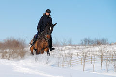 Horseback riding in winter Stock Photography