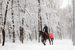 Horseback riding in winter woods Royalty Free Stock Image