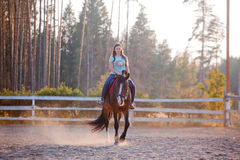 Horseback riding. The young woman horseback riding at summer evening royalty free stock image