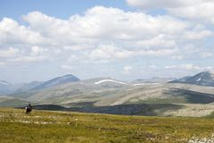Horseback Ruiter in de Noordelijke Bergen van Mongolië stock afbeelding