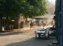 Horseback ruiters in het oude westen Stock Foto