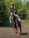 Horseback vacation in summer farm Royalty Free Stock Image