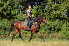 Horseback vakantie in de zomerhout Royalty-vrije Stock Afbeelding
