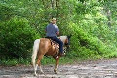 Horseback van de mens het Berijden Royalty-vrije Stock Foto