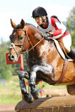 Horseback van de vrouw op het springen rood kastanjepaard